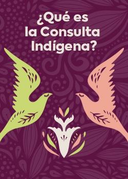 ¿Qué es la consulta indigena? - Miniatura PDF