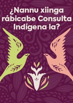 ¿nannu xiignga rábicabe consulta indígena la? - MIniatura PDF
